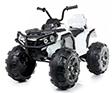 Motos & ATVs